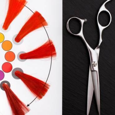 Lets explain hair colour
